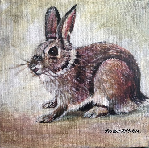 Cotton Tail I