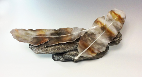 Eagle Feathers on Driftwood