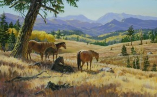 Mark z Hobson Horses: Midday Hangout
