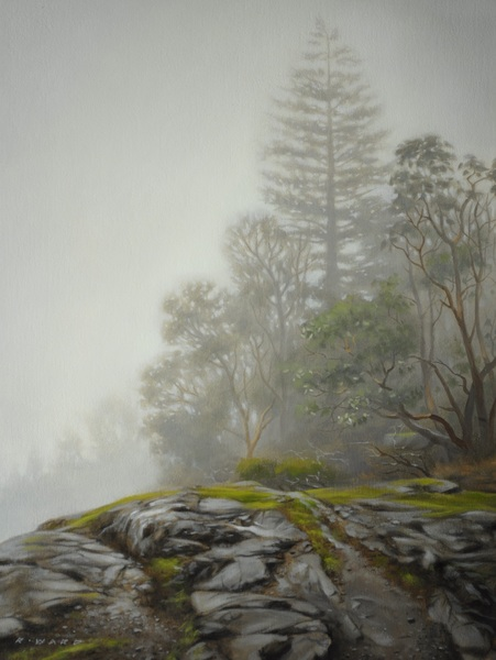 Ray Ward Foggy Grove