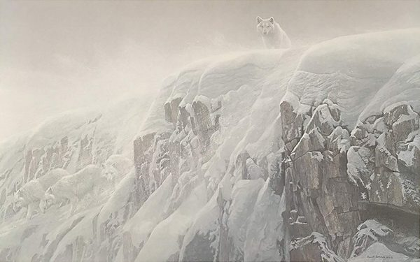 Robert z Bateman Arctic Cliff White Wolves