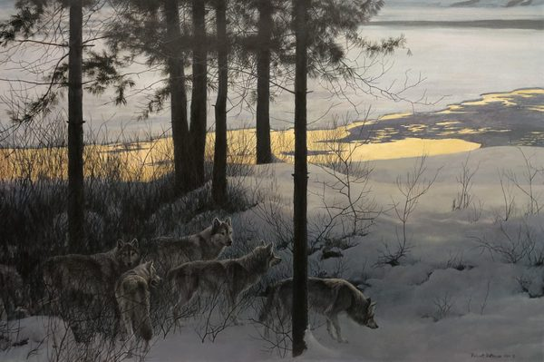 Robert z Bateman Edge Of Night Timber Wolves