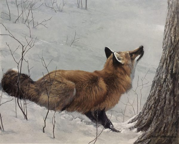 Robert z Bateman Game Over Fox and Maple
