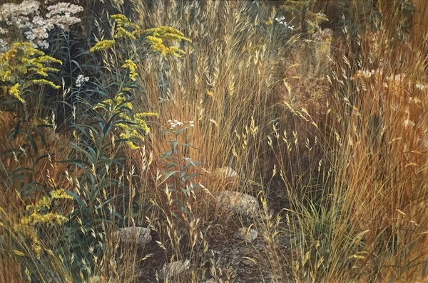 Robert z Bateman Marginal Meadow