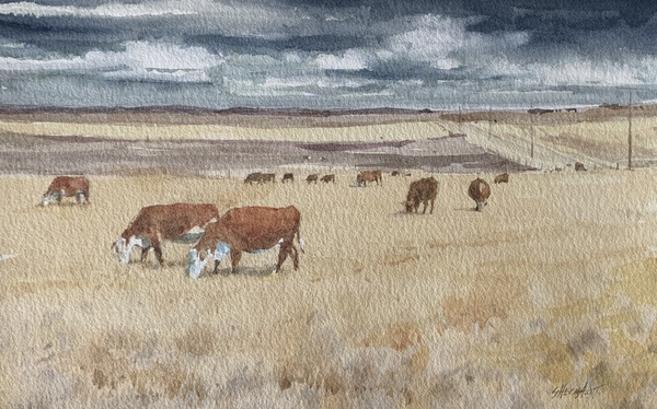 Prairie Ranch by Sheena Lott