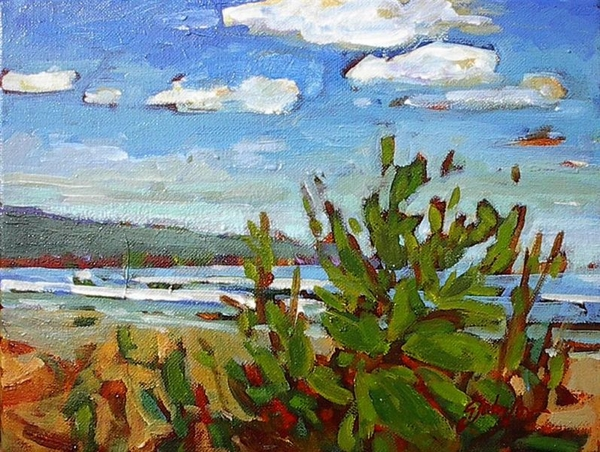 Gail z Johnson Shoreline Study