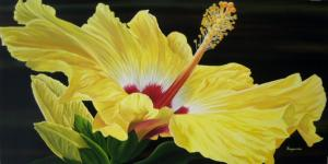 Dennis z Magnusson Yellow Hibiscus