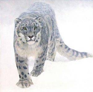 Robert z Bateman Out of the White - Snow Leopard