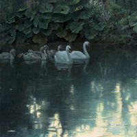 Robert z Bateman Great Durnfort Swans